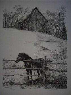 Horse and Fence Pen & Ink Print