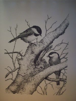 Chickadee Pen & Ink Print